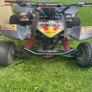 2007 Trx 400