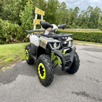 Tao Motors 200cc Adult ATV
