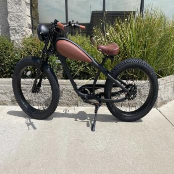 luxury Electric Bike