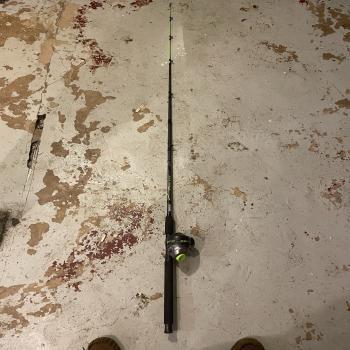 2 catfish poles & 1 small pole