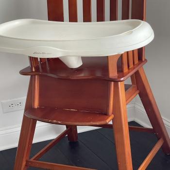 Eddie Bauer Wood Hi Chair