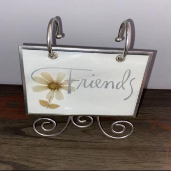 """Friends"" Photo Album"
